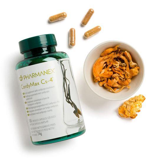 Supliment alimentar cu ciuperca cordyceps sinensis